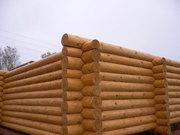 Строительство и отделка домов и бань из оцилиндрованного бревна